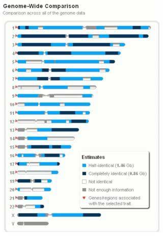 Full Sibling Genome Comparison