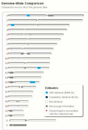 Second Cousin Genome Comparison